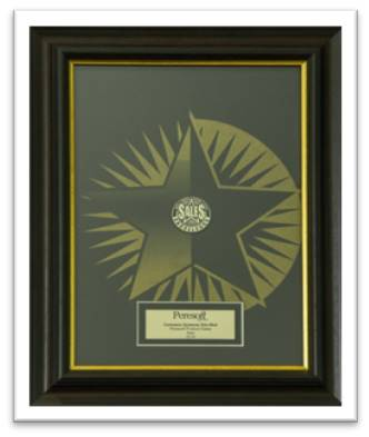 Peresoft Sales Achiever 2014